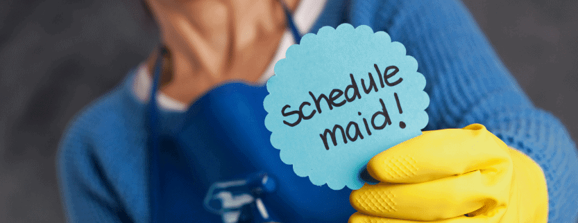 maid service software